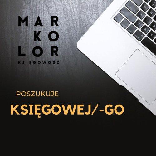 Praca Księgowa/-y